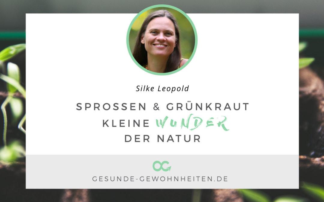Sprossen und Grünkraut – kleine Wunder der Natur